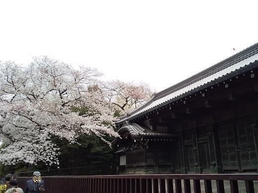東京国立博物館*黒門.jpg