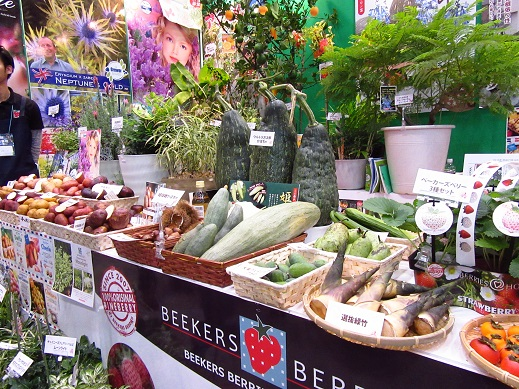 野菜1jpg.jpg